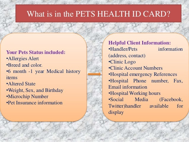 how to record a phone call on iphone how to customize your pet health id card 20955