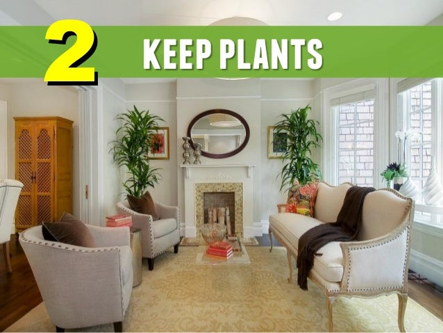 22 keepplants  13. How To Decorate Your House   Home Design Ideas