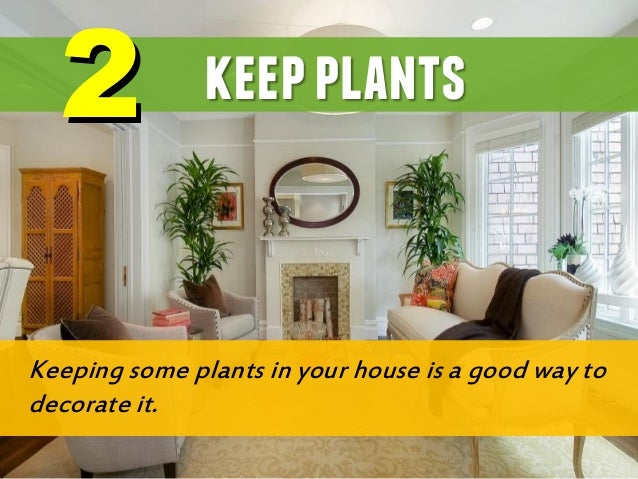 Amazing Green Plants Make The Air Fresher And Cleaner, Helping Give An Assist In  Breathing During Day Time ...
