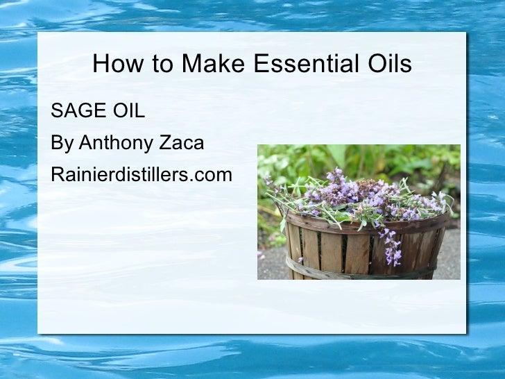 How to Make Essential OilsSAGE OILBy Anthony ZacaRainierdistillers.com