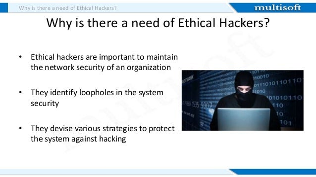 100+ Free Hacking Tools To Become Powerful Hacker