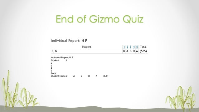 How to do the gizmos