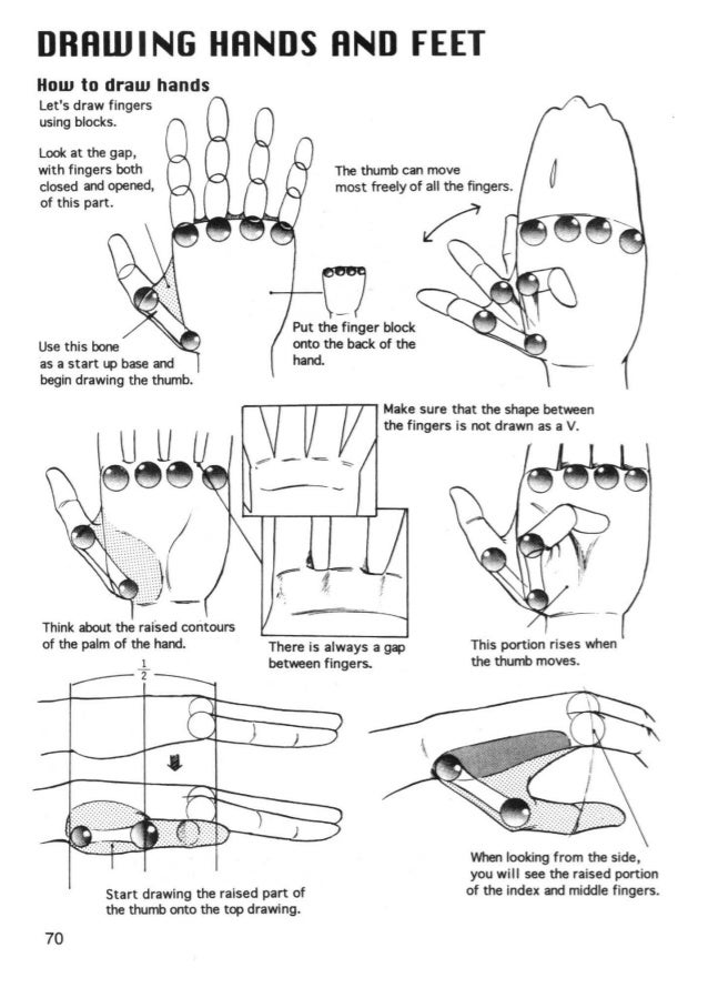 Hands should look totally differentdepending upon how strongly thewrist is twisted and its angle.Sometimes you may not be ...