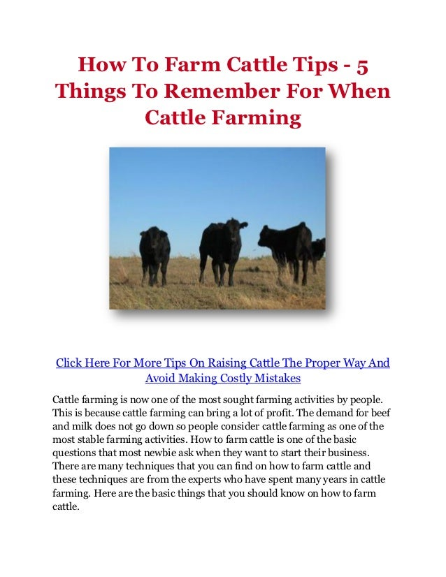 How To Farm Cattle Tips - 5Things To Remember For When        Cattle FarmingClick Here For More Tips On Raising Cattle The...