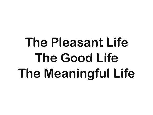 The Pleasant Life The Good Life The Meaningful Life