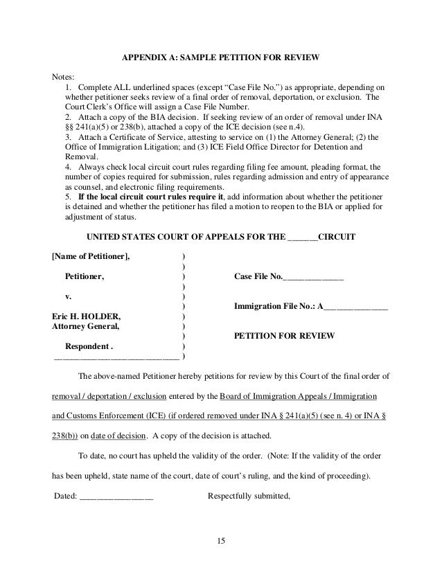 How to file an immigration petition for review – Sample Case File