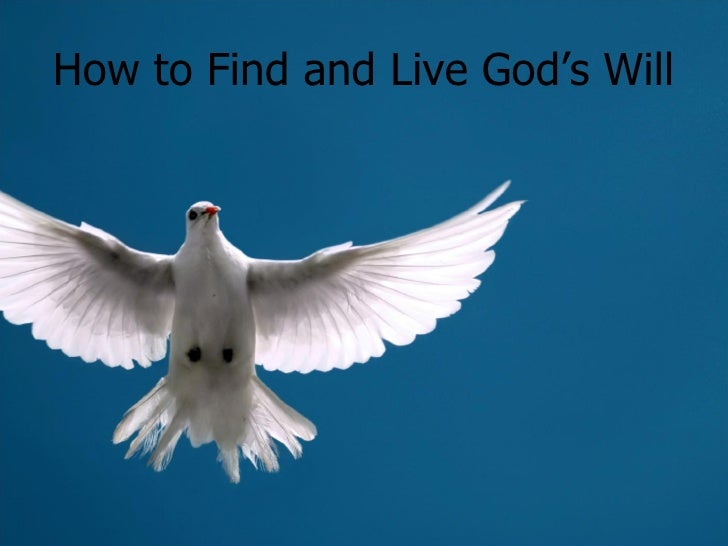 How to Find and Live God's Will