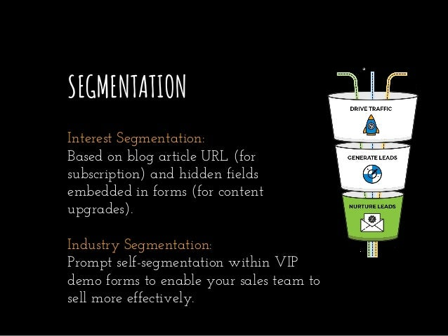 SEGMENTATION Interest Segmentation: Based on blog article URL (for subscription) and hidden fields embedded in forms (for ...