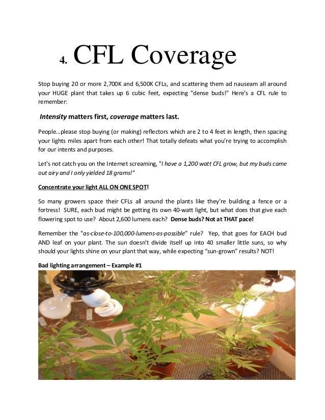 How to Get Huge, Dense, Potent Buds Using CFL Lighting!