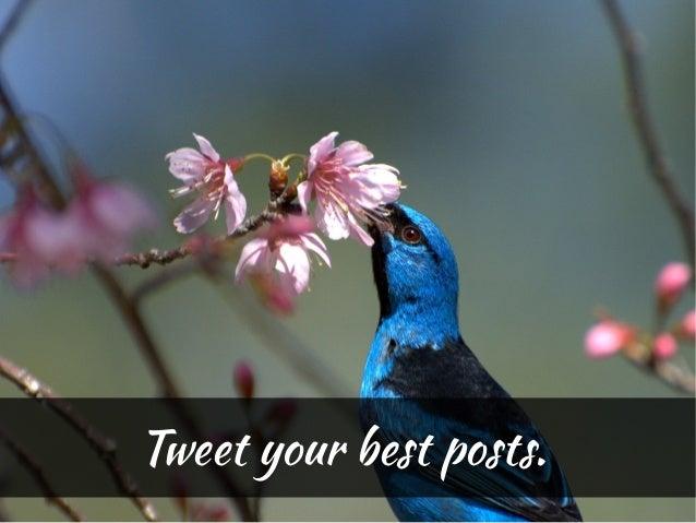 Tweet your best posts.