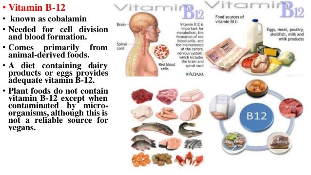 Foods Containing Vitamin B12 For Vegetarians | Food