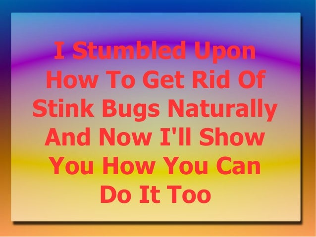 I Stumbled Upon How To Get Rid OfStink Bugs Naturally And Now Ill Show You How You Can      Do It Too