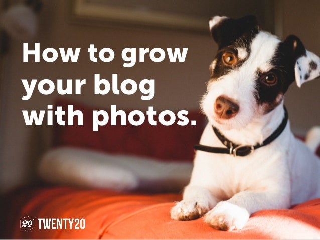 your blog with photos. How to grow