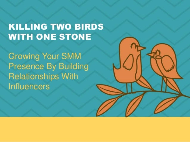 KILLING TWO BIRDS WITH ONE STONE Growing Your SMM Presence By Building Relationships With Influencers