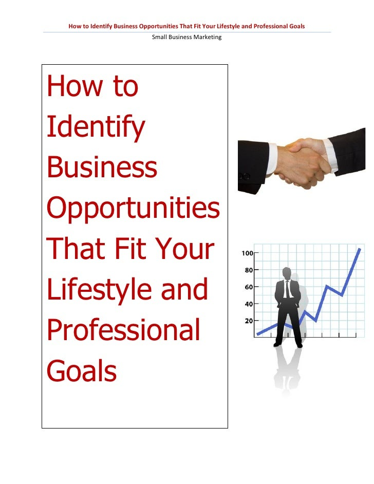 How to Identify Business Opportunities That Fit Your Lifestyle and Professional Goals                               Small ...