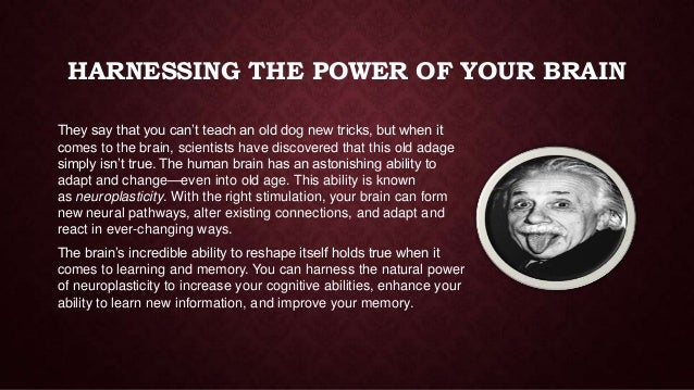 HARNESSING THE POWER OF YOUR BRAIN They say that you can't teach an old dog new tricks, but when it comes to the brain, sc...