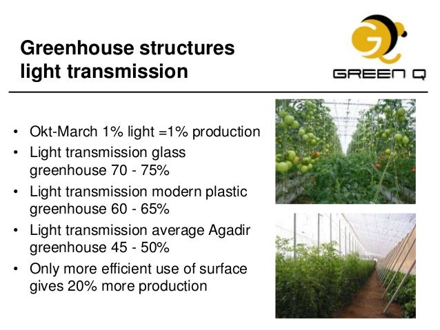 How to improve tomato production in morocco green q - Increase greenhouse production cost free trick ...