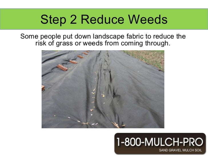 How To Lay Mulch For Your Landscape In Los Angeles California 1