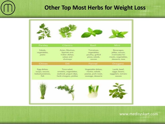 herbal remedies used for weight loss essay If you are determined for losing your extra pounds following natural herbal home remedies for losing weight can be extremely helpful for you these natural tips for weight loss offer ingredients that have been used in traditional medicine for thousands of years to support the healthy functioning of the metabolism, helping to promote a balanced.