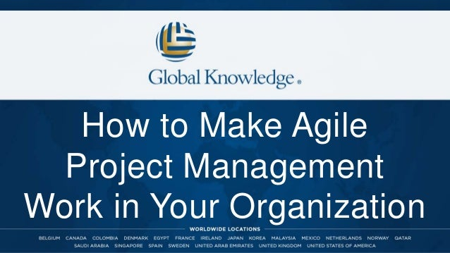 How to Make Agile Project Management Work in Your Organization