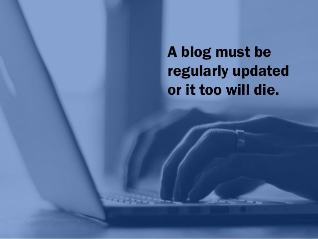 X X X X X X X X Some successful blogs are updated once a week, others several times a day.