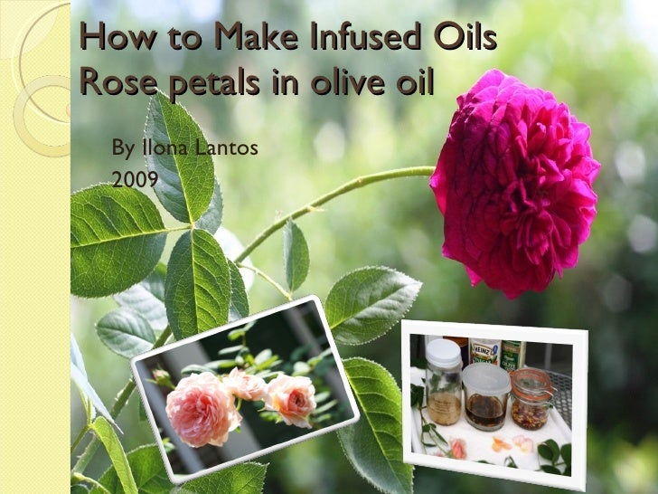 How to Make Infused Oils Rose petals in olive oil By Ilona Lantos 2009