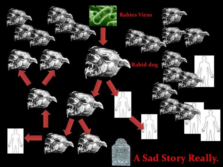 Rabies Virus<br />Rabid dog<br />A Sad Story Really.<br />