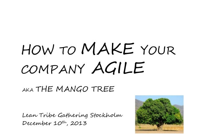 MAKE YOUR COMPANY AGILE  HOW TO AKA  THE MANGO TREE  Lean Tribe Gathering Stockholm December 10th, 2013