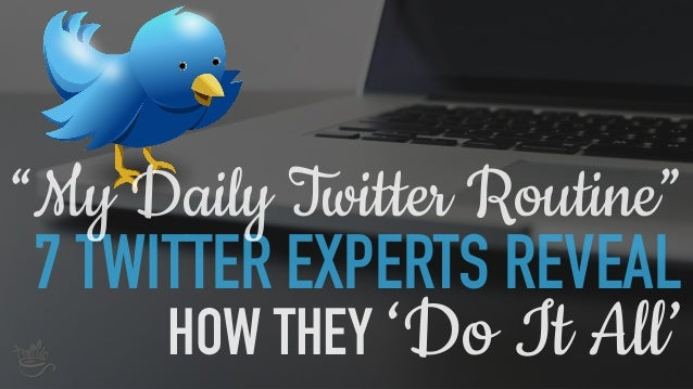 "7 TWITTER EXPERTS REVEAL ""My Daily Twitter Routine"" HOW THEY 'Do It All'"