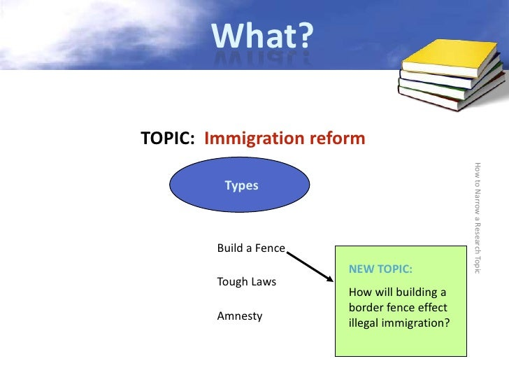 should immigration laws be reformed essay
