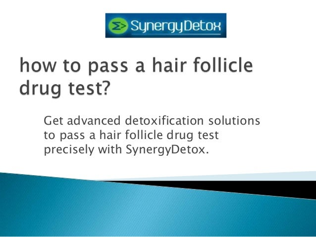 hair drug test follicle strip