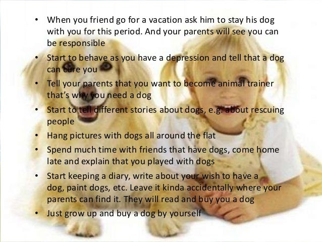 How To Get Your Parents To Buy A Dog