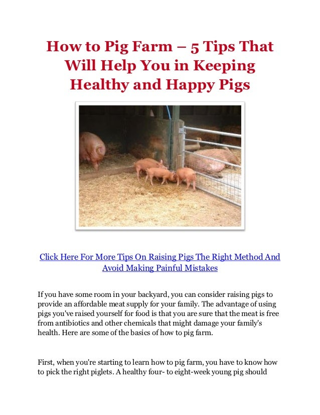 How to Pig Farm – 5 Tips That    Will Help You in Keeping    Healthy and Happy PigsClick Here For More Tips On Raising Pig...