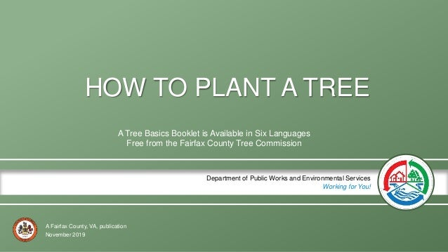A Fairfax County, VA, publication Department of Public Works and Environmental Services Working for You! HOW TO PLANT A TR...