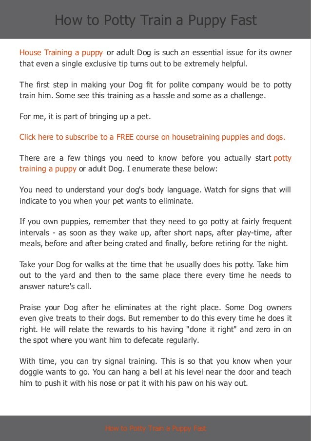 How To Potty Train Your Dog In  Days