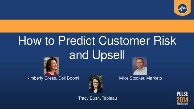 How to Predict Customer Risk and Upsell Kimberly Gress, Dell Boomi Mike Stocker, Marketo Tracy Bush, Tableau