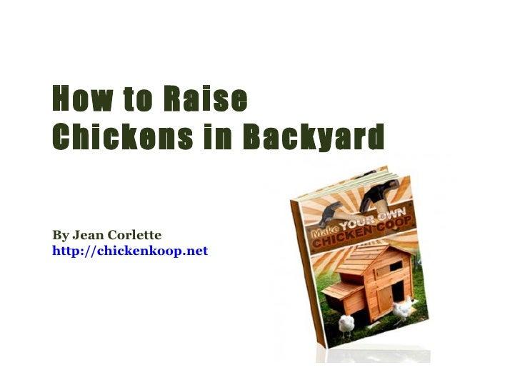How to Raise Chickens in Backyard By Jean Corlette http://chickenkoop.net