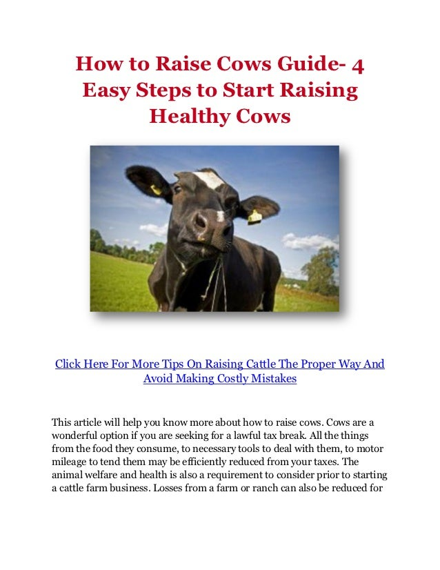 How to Raise Cows Guide- 4     Easy Steps to Start Raising           Healthy CowsClick Here For More Tips On Raising Cattl...