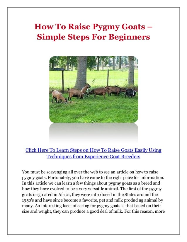 How To Raise Pygmy Goats –      Simple Steps For Beginners Click Here To Learn Steps on How To Raise Goats Easily Using   ...