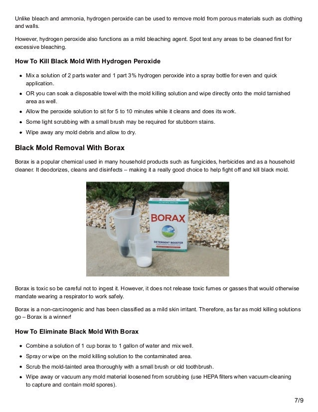 69 7 - Black Mold Removal Products