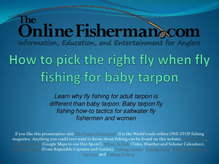 How to saltwater fly fish for baby tarpon for Learn how to fly fish