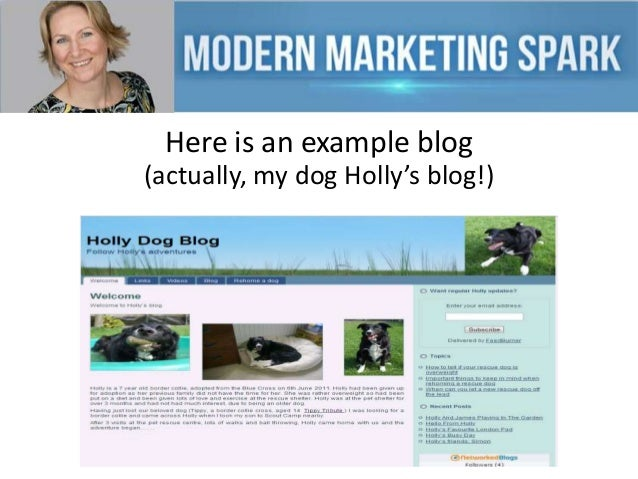 Here is an example blog (actually, my dog Holly's blog!)