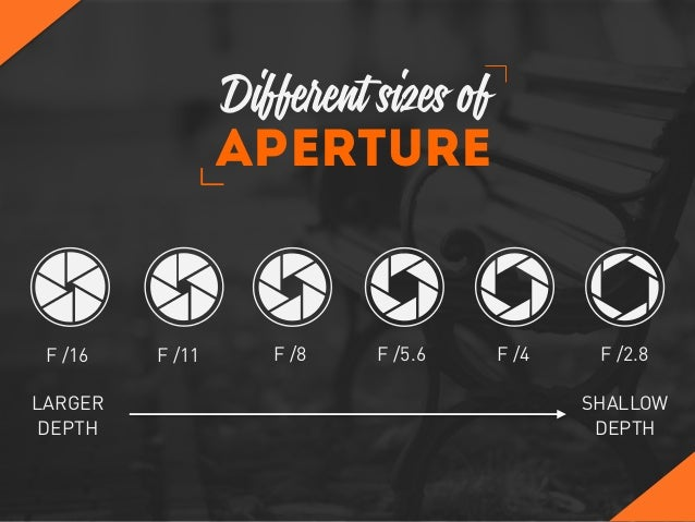 F /2.8F /4F /5.6F /8F /11F /16 Aperture LARGER DEPTH SHALLOW DEPTH Different sizes of