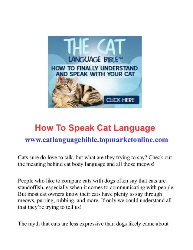 How To Speak Cat Language www.catlanguagebible.topmarketonline.com Cats sure do love to talk, but what are they trying to ...