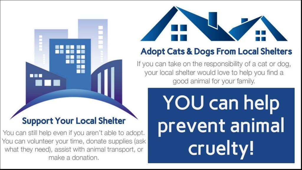 Proactive prevention in animal cruelty
