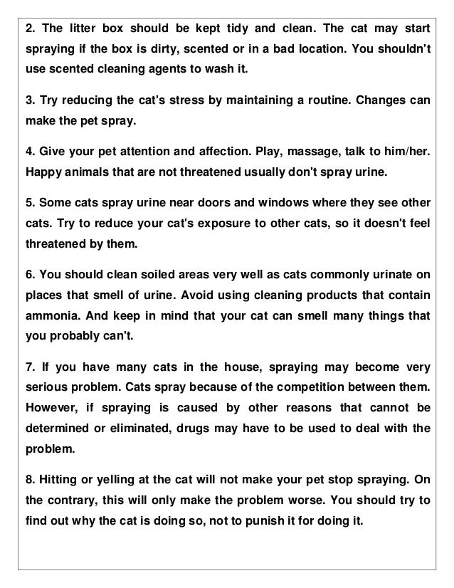 How to stop your cat peeing outside the litter box permanently!