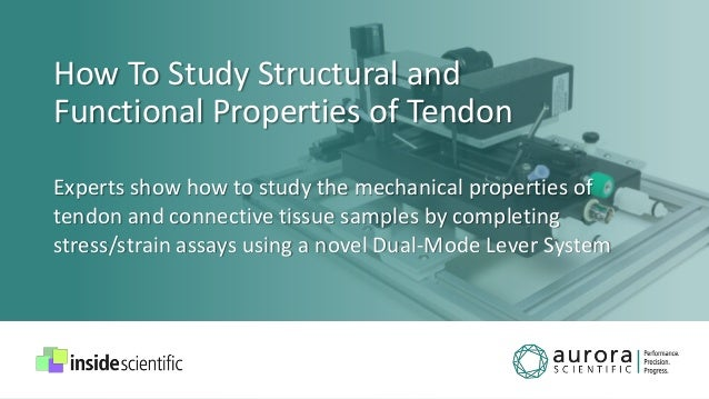 How To Study Structural and Functional Properties of Tendon Experts show how to study the mechanical properties of tendon ...