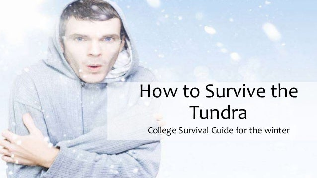 How to Survive the Tundra College Survival Guide for the winter