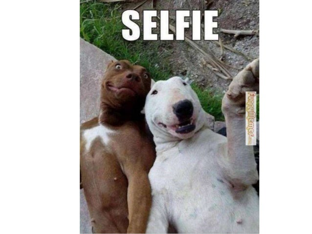 How to Take a Selfie.