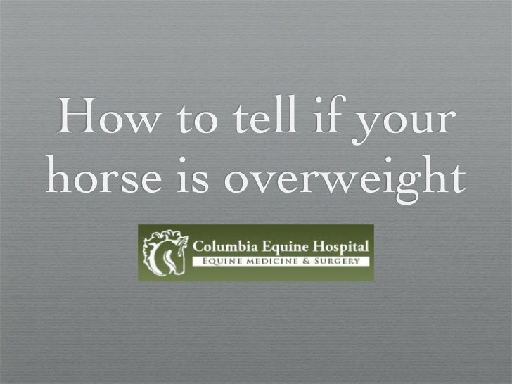 How to tell if yourhorse is overweight